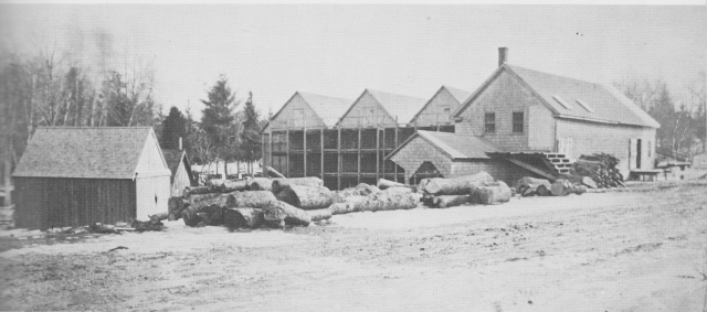 Ice House and Saw Mill.jpg